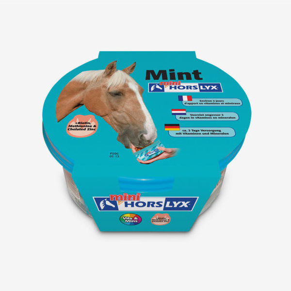 Horslyx mini, Mint & minthol